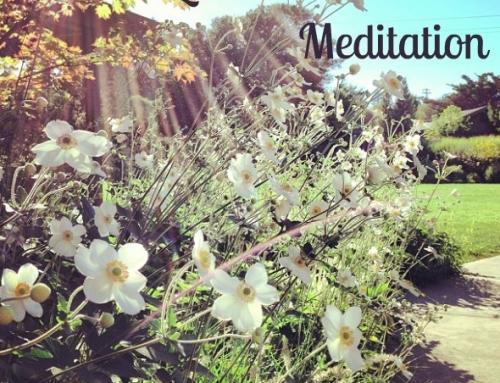 Love & Connection Meditation