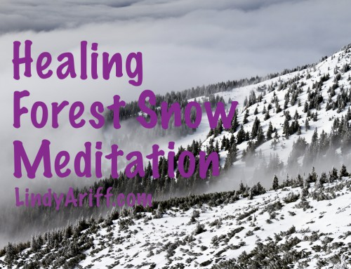 Forest Snow Meditation