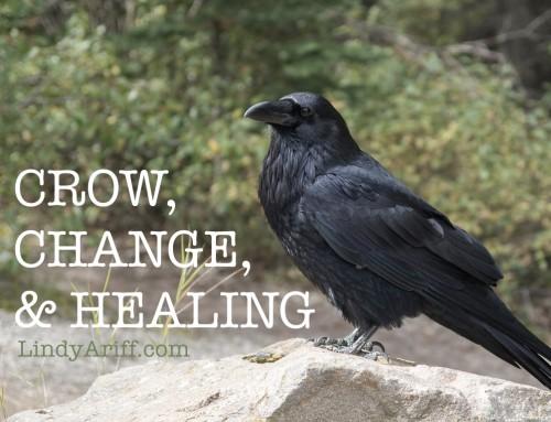 Crow, Change, and Healing